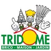 Logo tridome 2